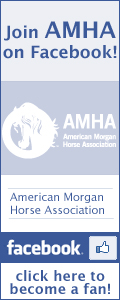 Join AMHA on Facebook!