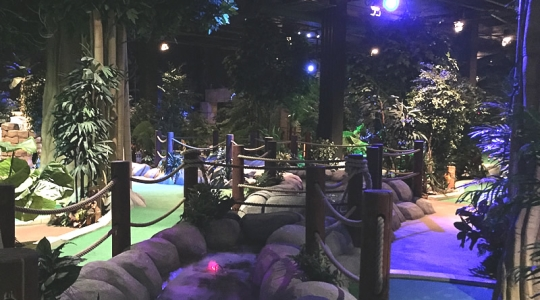 Cardiff Indoor Mini Golf