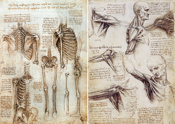 A Brief History Of Medical Advancements Derived From Cadaveric Study