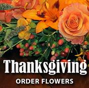 Thanksgiving Web Ads